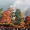 Туристы отказываются от путешествий по Китаю из-за плохой экологии