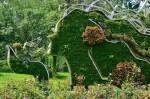 Ботанический сад Пекина: суйсеки, бонсай, необычные растения