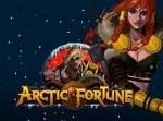 Arctic Fortune — игровой автомат на деньги в Казино Вулкан
