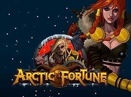 Arctic Fortune - игровой автомат на деньги в Казино Вулкан