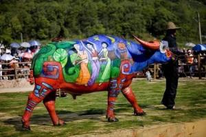 Боди-арт на буйволах в Китае2