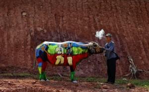 Боди-арт на буйволах в Китае3