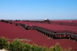Чудо природы: в Китае появился необычный пляж красного цвета