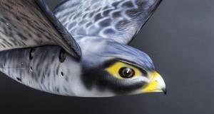 Дроны в виде птиц теперь будут наблюдать за китайцами