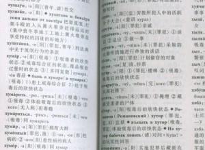 Где в Китае заказать медицинский перевод с китайского на русский или цена хорошего переводчика в Поднебесной4