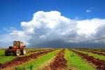 КНР планирует вложить в сельское хозяйство Татарии 400 миллионов долларов