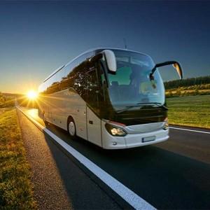 Как просто купить билет на автобус на сайте Гоубас