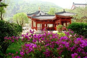 Китай летом2
