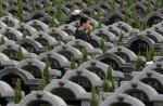 Китайские похороны и китайские кладбища
