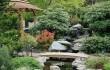 Китайские сады3