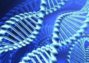 Китайские ученые создадут карту ДНК исторических персон