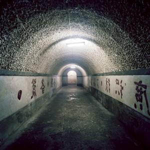 Китайцы буду жить под землей