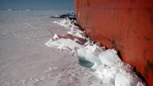Китайцы создадут новый ледокол