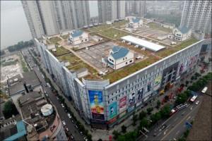 Крупнейшие города Китая признаны непригодными к жизни