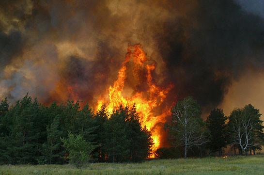 Лесные пожары в Китае тушат более тысячи пожарных и военных