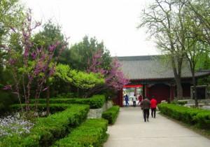Лесопарк Байваншань