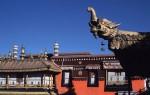 Митинг тибетцев разогнали при помощи оружия
