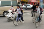 На чем ездят китайцы