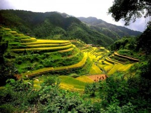 Необычные и интересные места в Китае