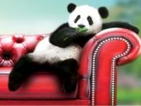 Обратная сторона мебельного тура в Китай