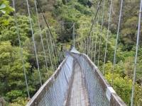 Обрыв веревочного моста в Китае и другие важные новости для туристов