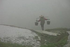 Одна из китайских точек общепита продавала воздух