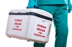 Китай ввел новую систему распределения донорских органов