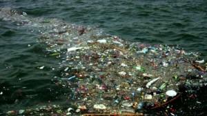 Пекинские власти собираются обучить детей утилизировать мусор и отходы