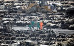 Подросток заработал 14 000 американских долларов на взрыве в Тяньцзине