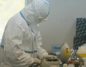 Птичий грипп уже на юго-западе Китая