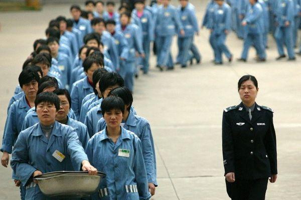 Реформа системы трудового воспитания в Китае