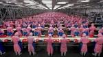 Реформа системы трудового воспитания в Китае. Часть 2