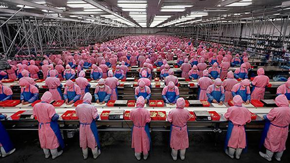 Реформа системы трудового воспитания в Китае2