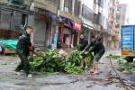 Результат тайфуна «Мучжигэ»: 5 миллионов человек остались без электричества