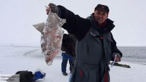 Россельхознадзор назвал опасными 24 тонны рыбы из Китая