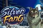 Волки в игровых аппаратах Gaminator на реальные деньги