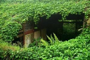 Сказочная деревня в Китае2