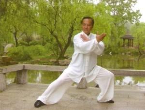 Сознание и эмоции в китайской медицине (часть первая)2