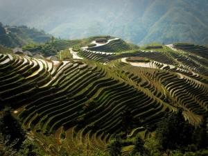 Тонкости путешествия в Китай2