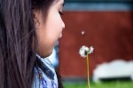 У ребенка в ухе китайские врачи обнаружили одуванчик