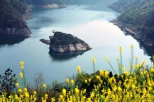 В Китае есть остров-черепаха, который появляется только весной