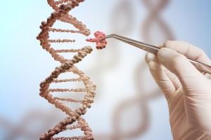 В Китае начали расследовать рождение детей с измененным геномом