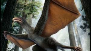 В Китае найдены останки динозавра Юрского периода, похожего на летучую мышь