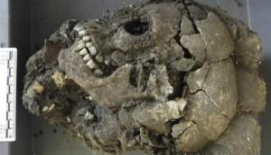В Китае обнаружены 68 черепов с «третьим глазом»