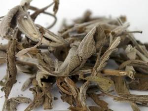 В Китае обнаружили древнейший в мире чай