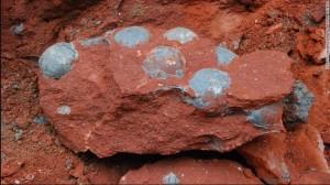 В Китае рабочие обнаружили кладку яиц, которым больше 90 миллионов лет