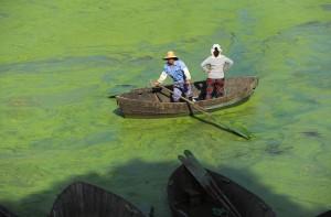 В Китае собираются казнить металлургов, которые загрязняют окружающую среду
