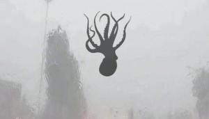 В Китае зафиксирован дождь из осьминогов и морских звезд