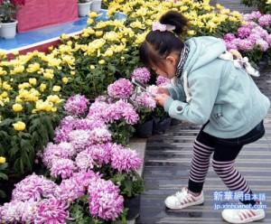 Вчера в Китае праздновался фестиваль «Чунъян»