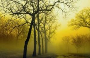 Желтый туман над Китаем